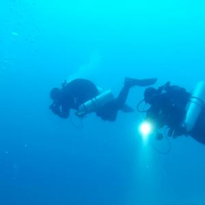 Otok Hvar wyprawa nurkowa Sealion